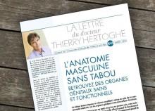 L'anatomie masculine sans tabou