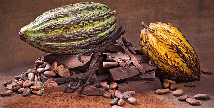 enfin un dentifrice au chocolat sant nature innovation. Black Bedroom Furniture Sets. Home Design Ideas