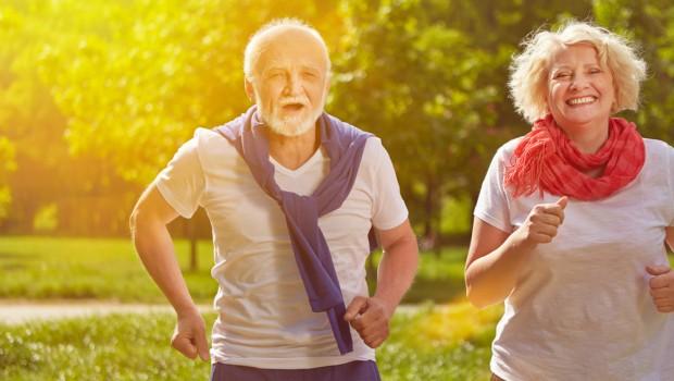 vieil homme dans le parc