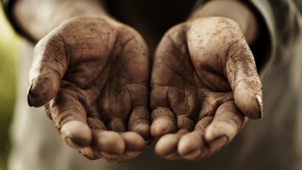 Des mains salies par la terre