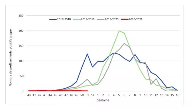 covid - graphique de la grippe